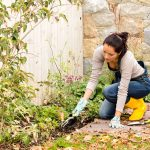 What You Should Do In Your Garden In Fall