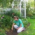 How To Create Beautiful And Easy-To-Maintain Landscape Designs For Your Home